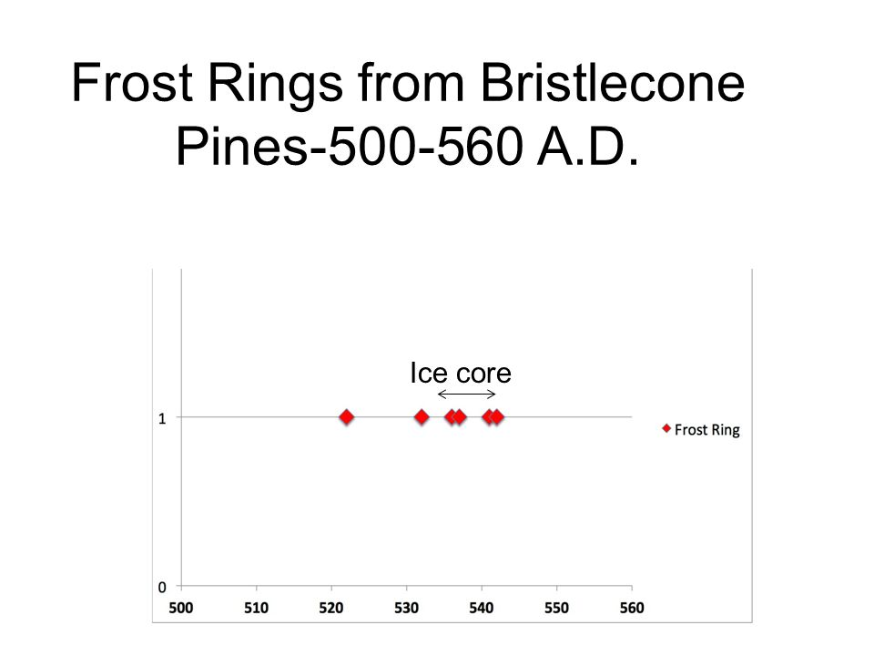 Frost Rings from Bristlecone Pines-500-560 A.D.