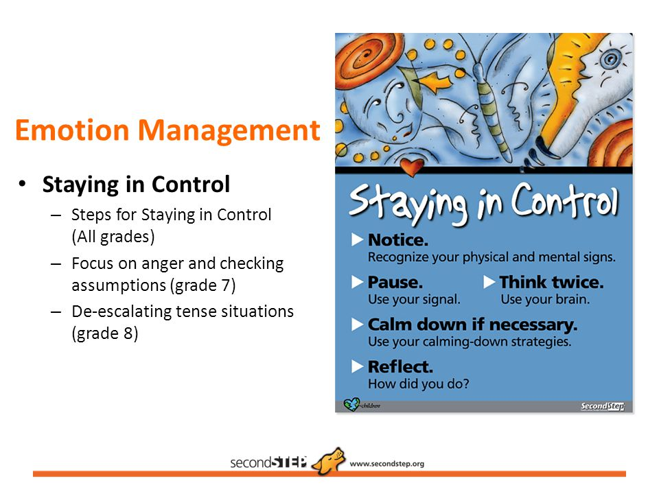 Emotion Management Staying in Control