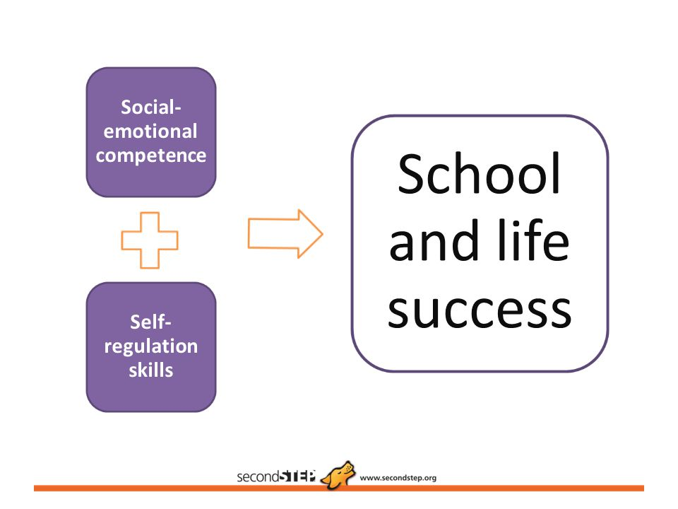 Social-emotional competence Self-regulation skills
