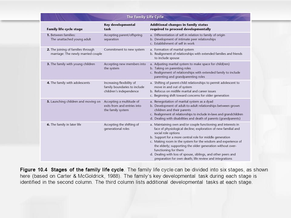 Figure 10. 4 Stages of the family life cycle