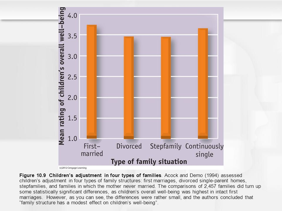 Figure 10. 9 Children's adjustment in four types of families
