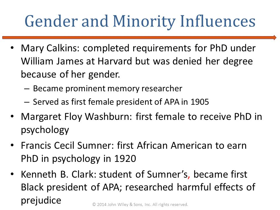 Gender and Minority Influences