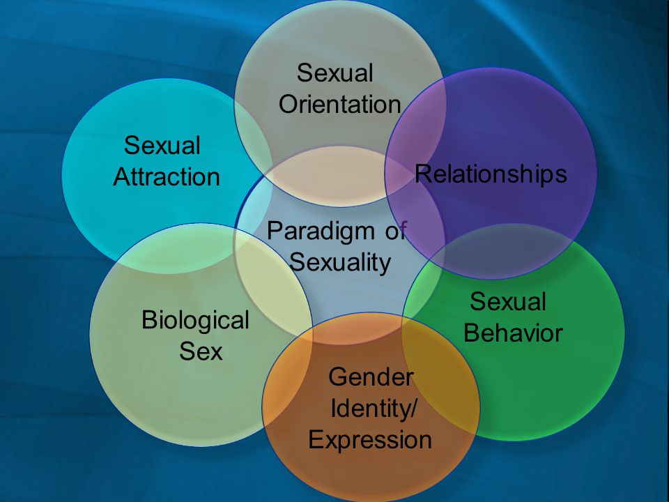 Sexual Orientation Sexual Relationships Attraction Paradigm of