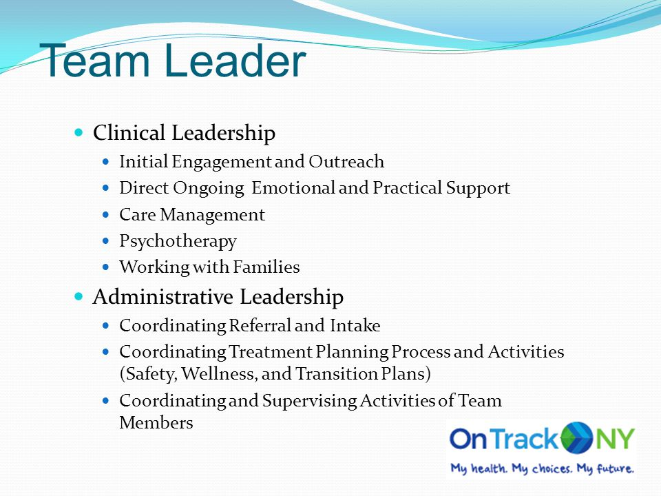 Team Leader Clinical Leadership Administrative Leadership