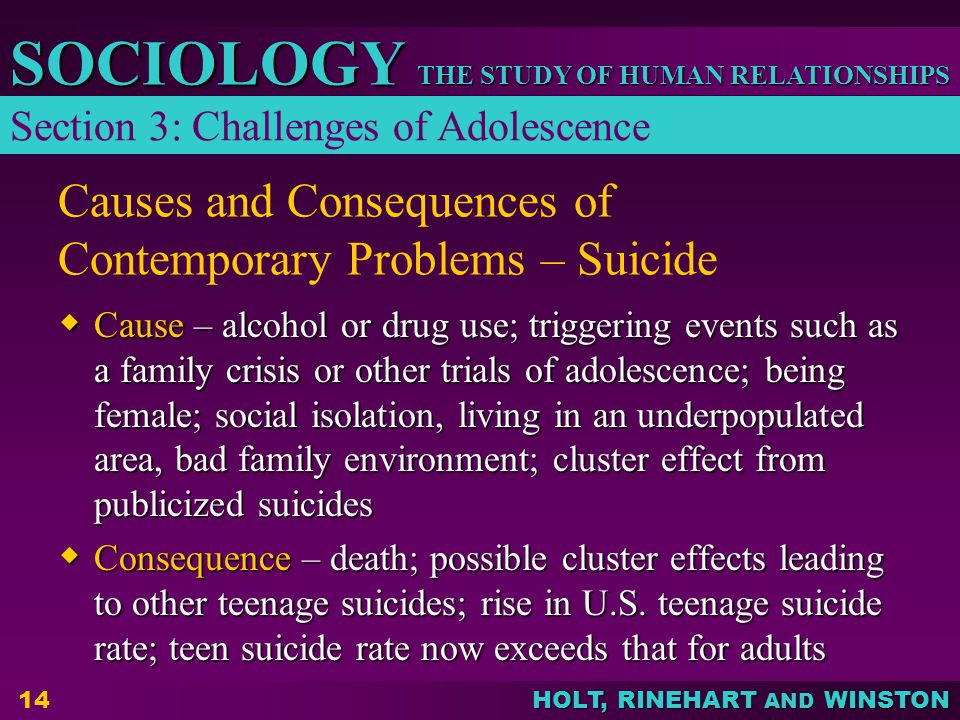 Causes and Consequences of Contemporary Problems – Suicide