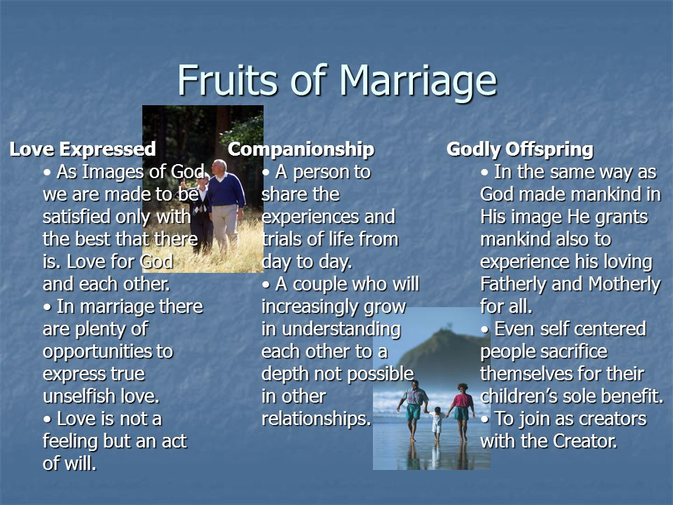 Fruits of Marriage Love Expressed
