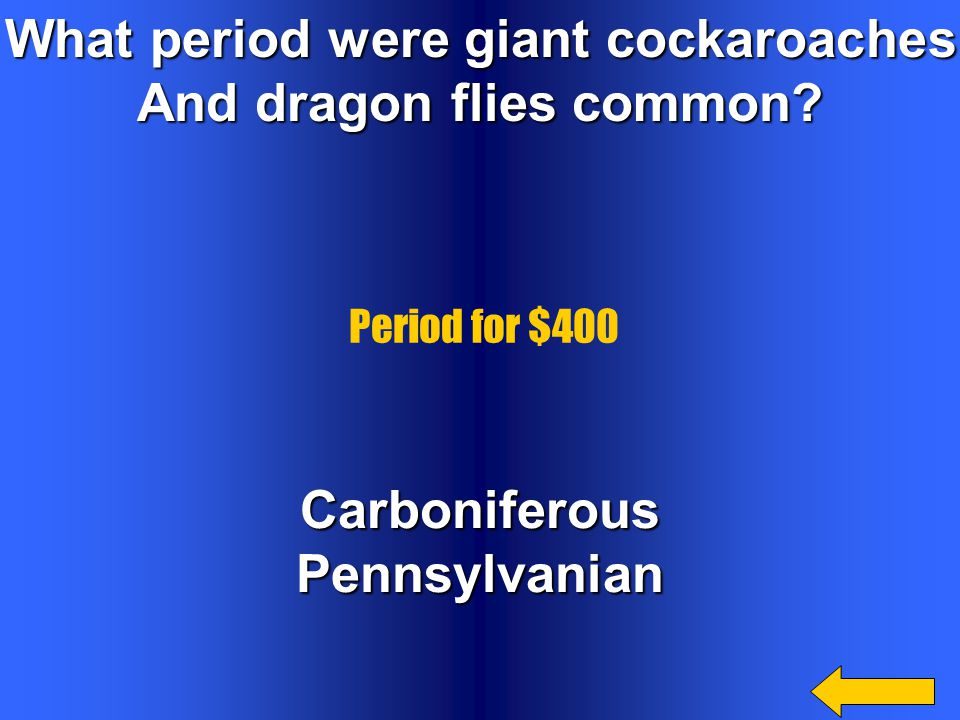 What period were giant cockaroaches And dragon flies common