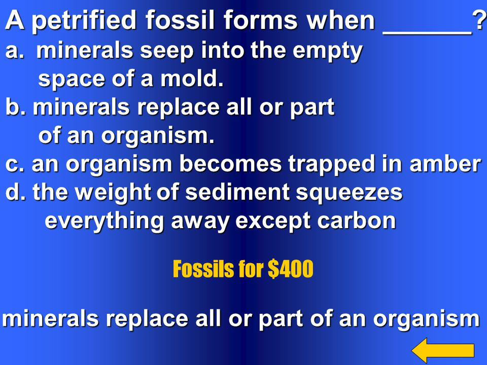 minerals replace all or part of an organism