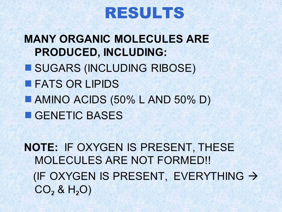 RESULTS MANY ORGANIC MOLECULES ARE PRODUCED, INCLUDING: