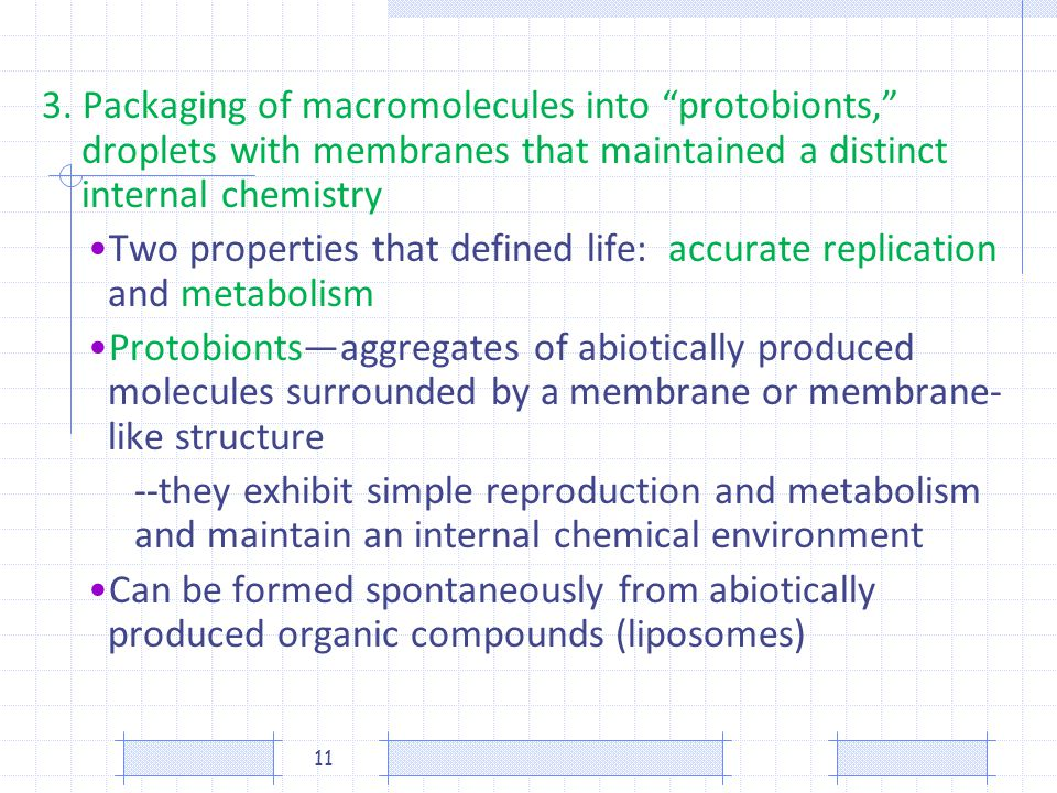 3. Packaging of macromolecules into protobionts, droplets with membranes that maintained a distinct internal chemistry