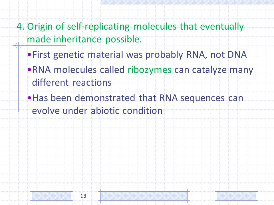 4. Origin of self-replicating molecules that eventually made inheritance possible.