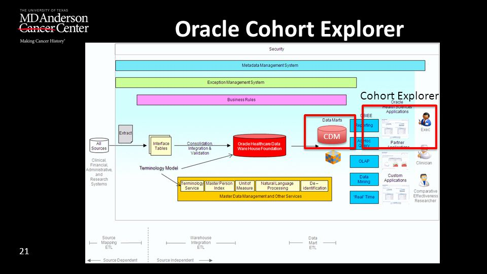 Oracle Cohort Explorer