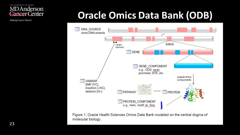 Oracle Omics Data Bank (ODB)