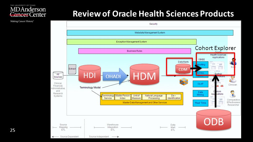 Review of Oracle Health Sciences Products