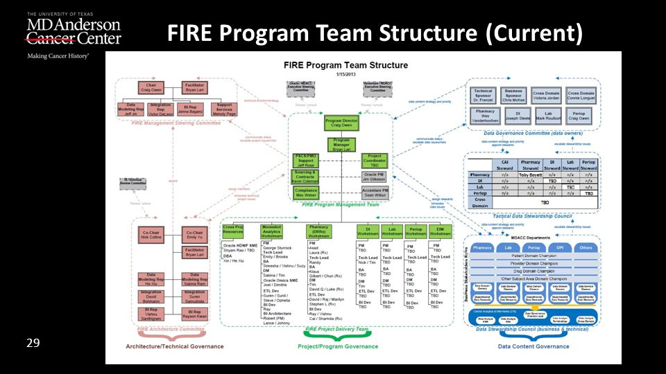 FIRE Program Team Structure (Current)