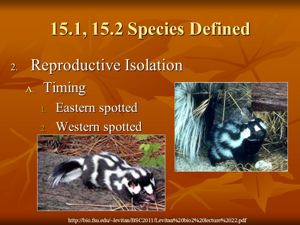 15.1, 15.2 Species Defined Reproductive Isolation Timing