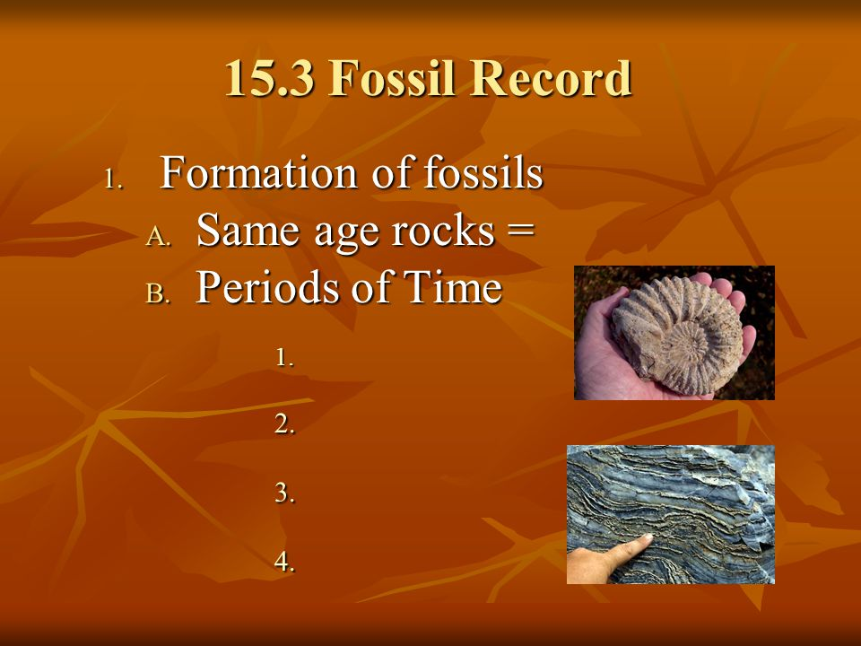 15.3 Fossil Record Formation of fossils Same age rocks =