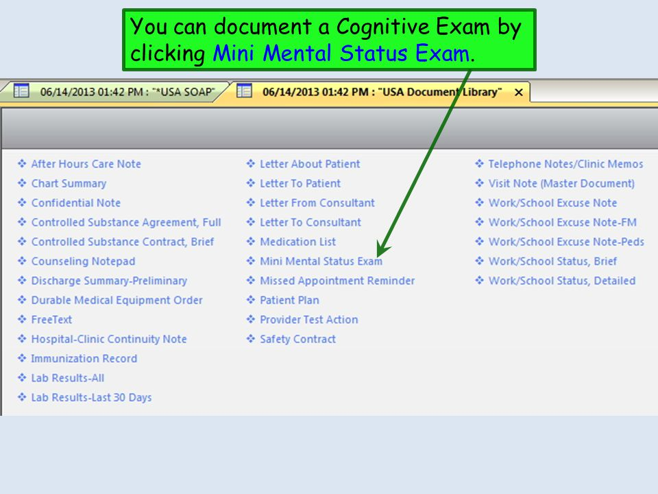 You can document a Cognitive Exam by clicking Mini Mental Status Exam.