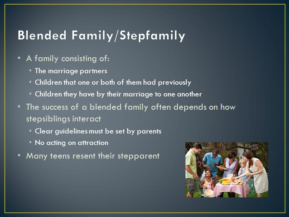 Blended Family/Stepfamily