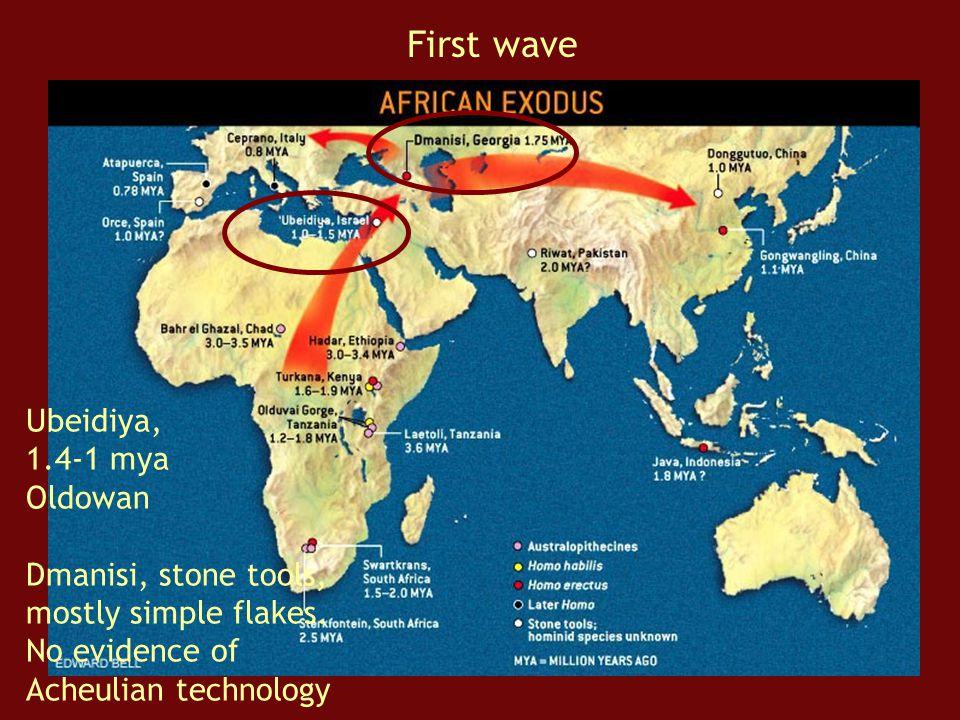 First wave Ubeidiya, 1.4-1 mya Oldowan