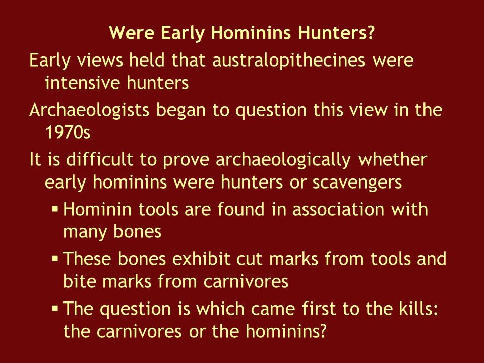 Were Early Hominins Hunters