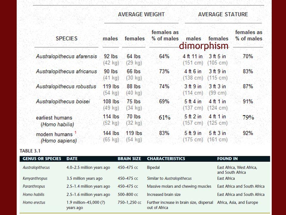 dimorphism http://anthro.palomar.edu/hominid/table_of_species.htm