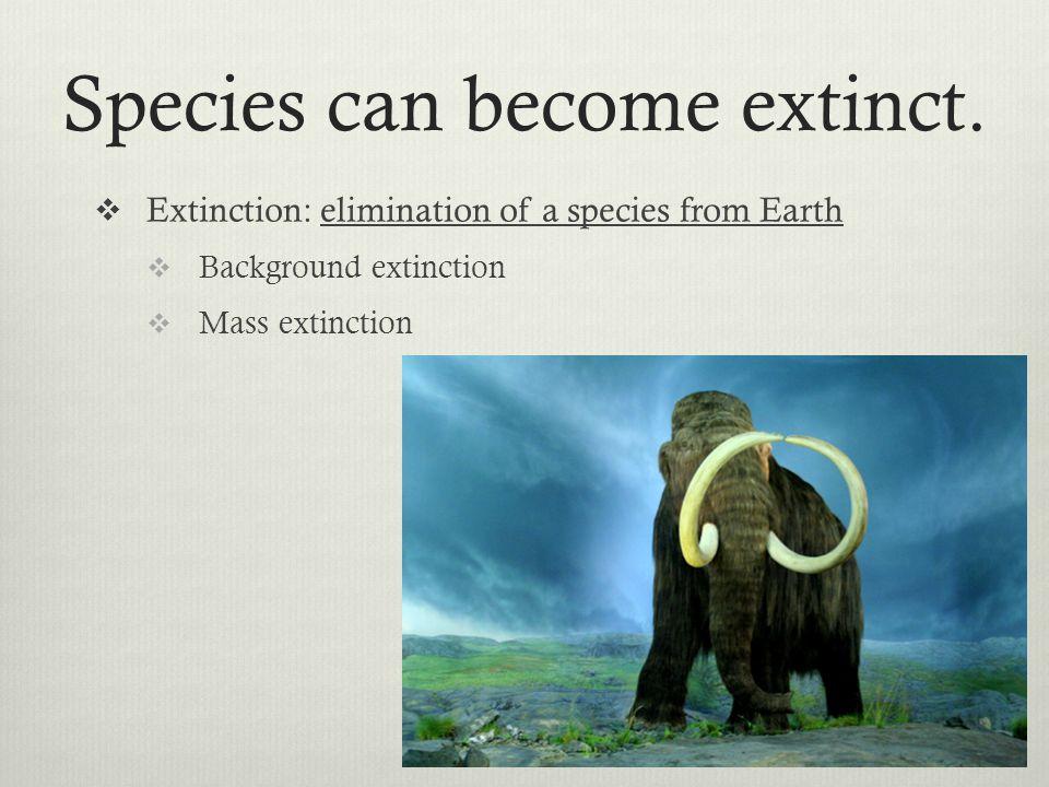 Species can become extinct.