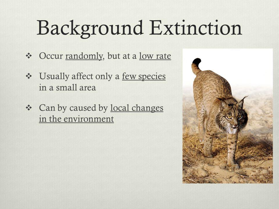 Background Extinction