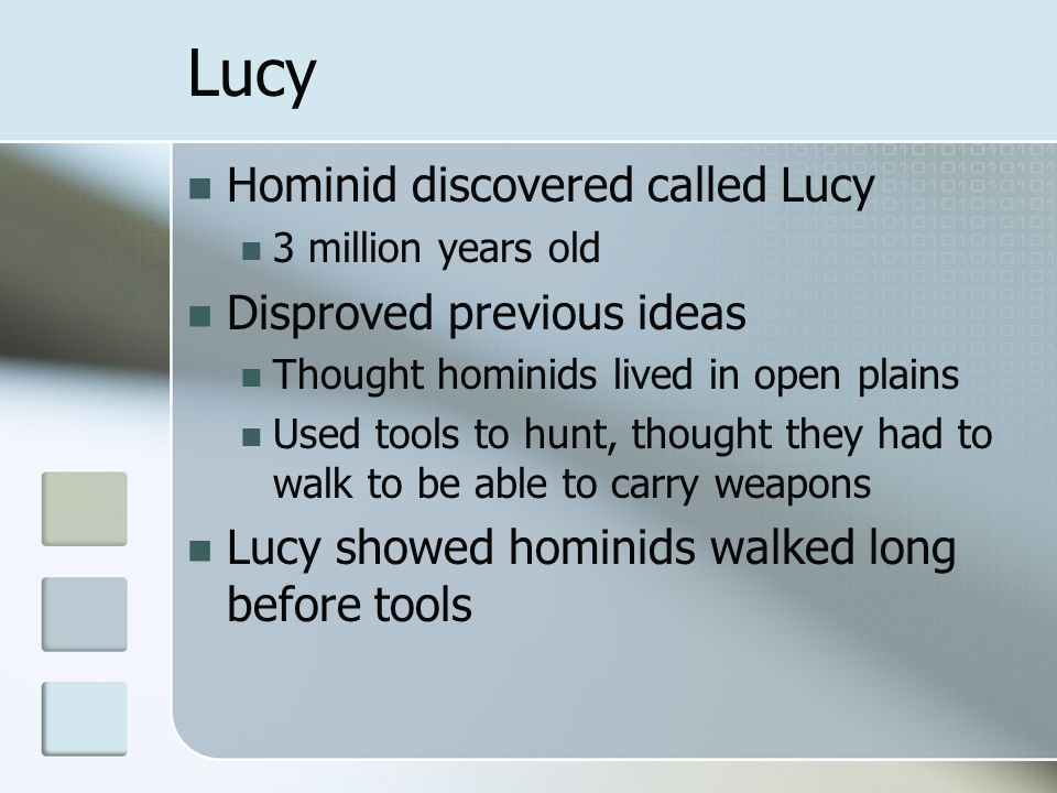 Lucy Hominid discovered called Lucy Disproved previous ideas