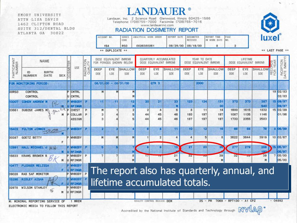 The report also has quarterly, annual, and lifetime accumulated totals.