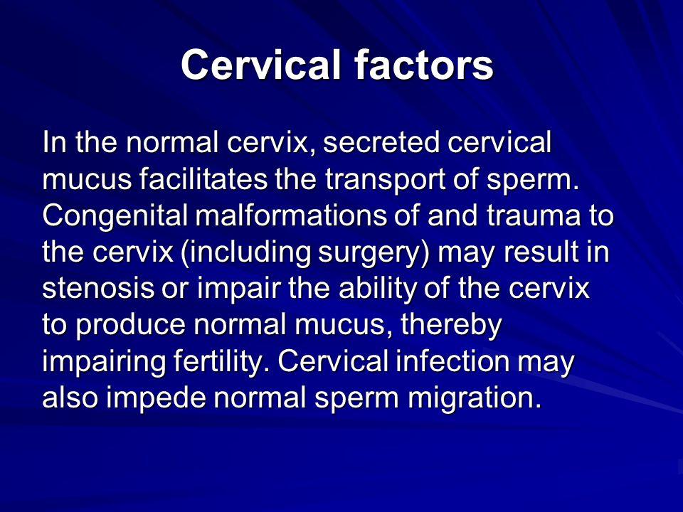 Cervical factors