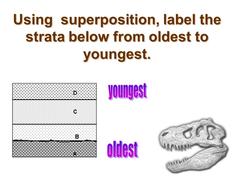 Using superposition, label the strata below from oldest to youngest.
