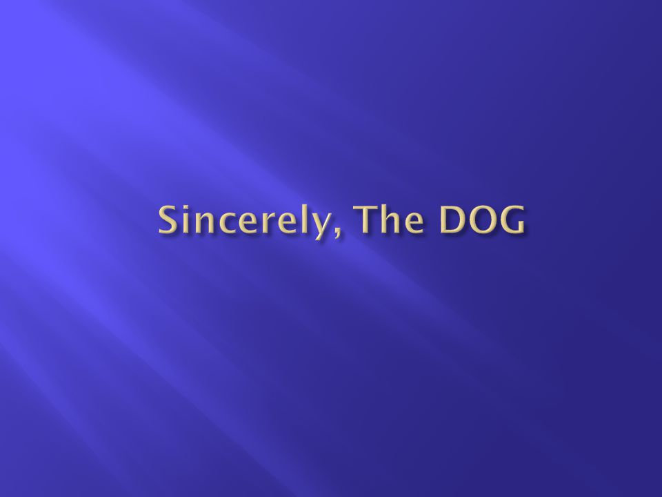 Sincerely, The DOG