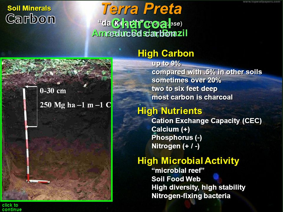 Terra Preta Charcoal Carbon Amazon Basin, Brazil reduced carbon