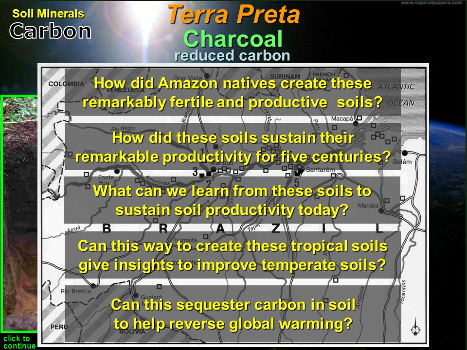 Terra Preta Charcoal Carbon reduced carbon
