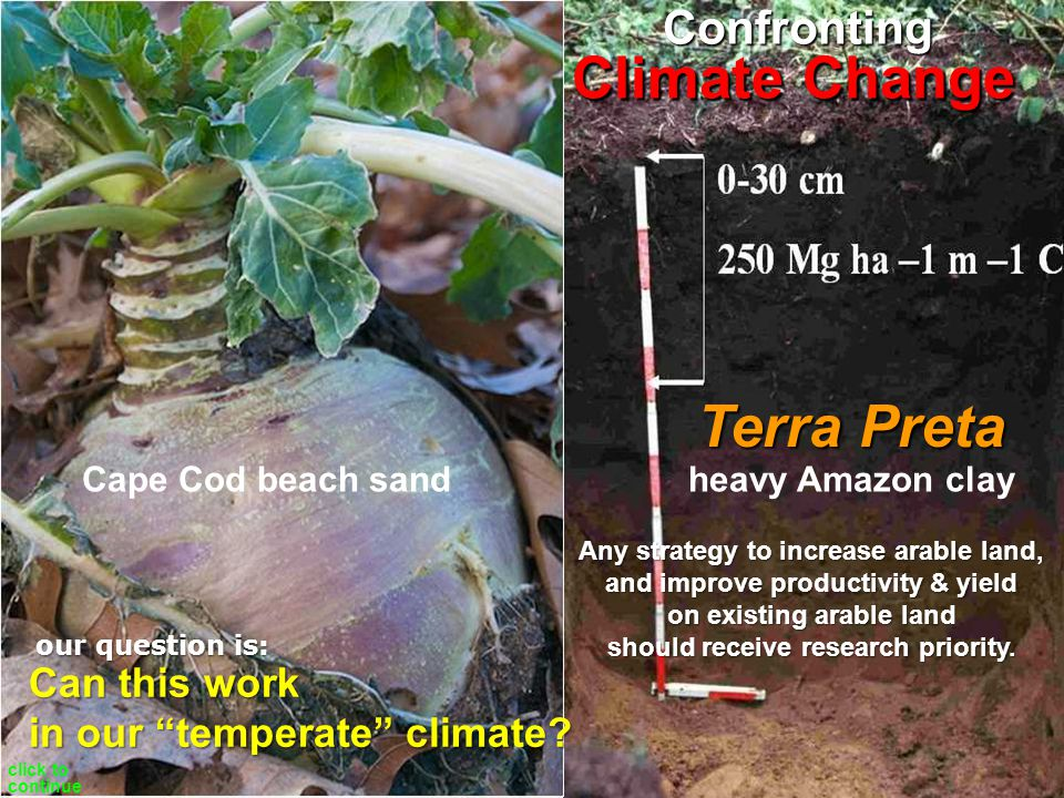 Carbon Negative Climate Change Terra Preta Confronting Robert Wells