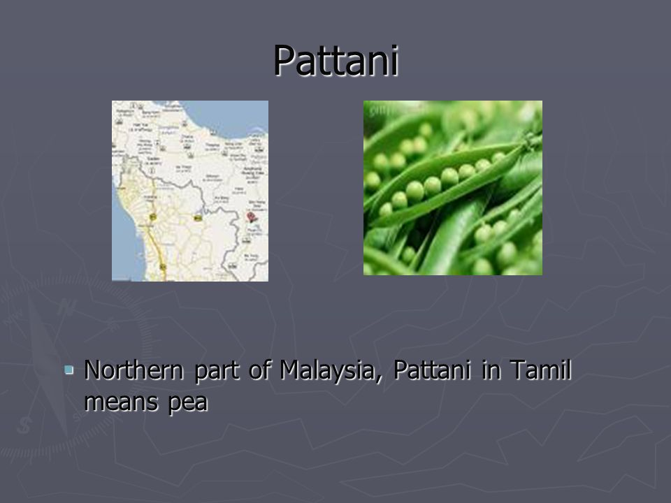 Pattani Northern part of Malaysia, Pattani in Tamil means pea