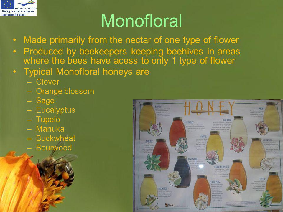 Monofloral Made primarily from the nectar of one type of flower