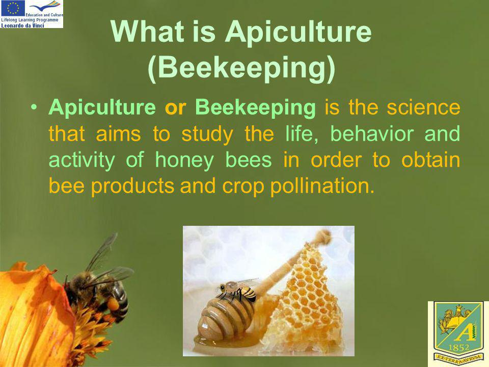 What is Apiculture (Beekeeping)