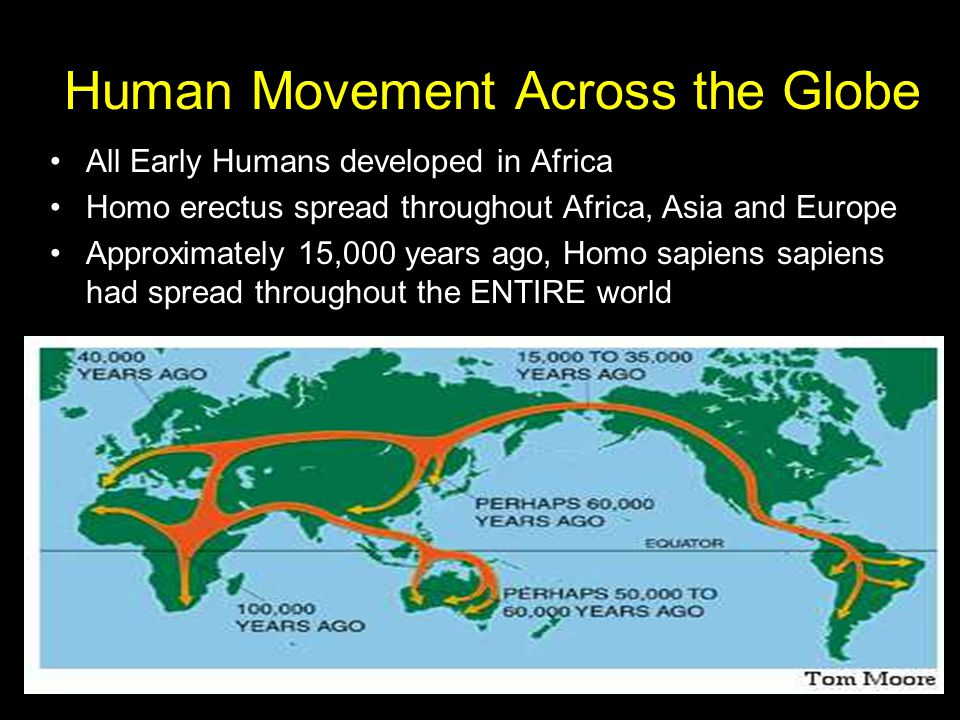 Human Movement Across the Globe