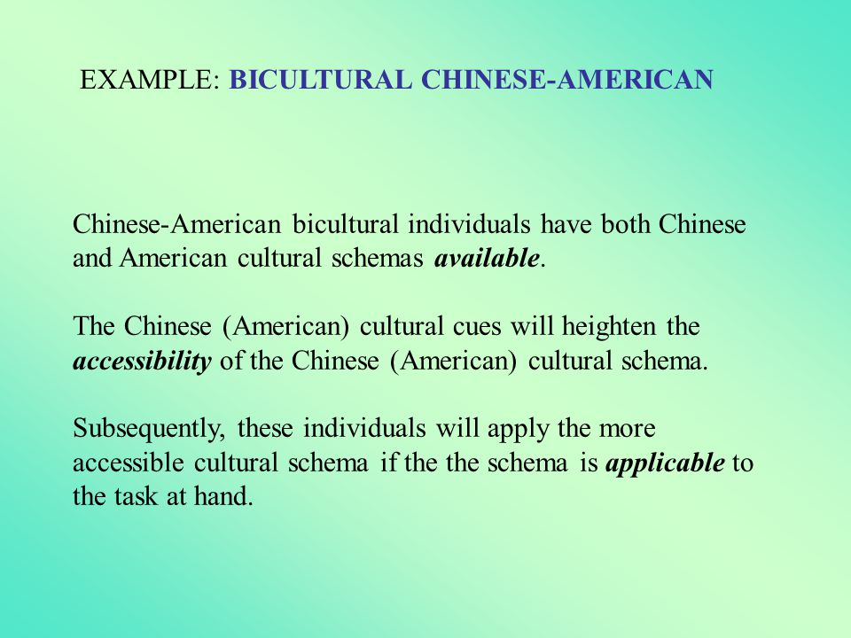 EXAMPLE: BICULTURAL CHINESE-AMERICAN