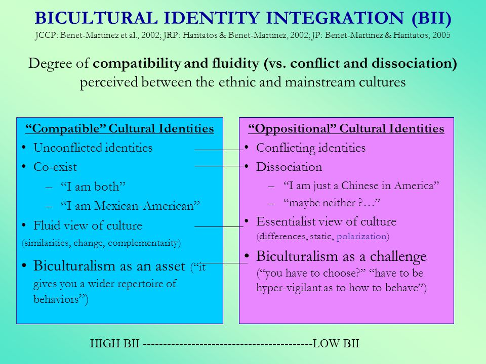 Compatible Cultural Identities Oppositional Cultural Identities