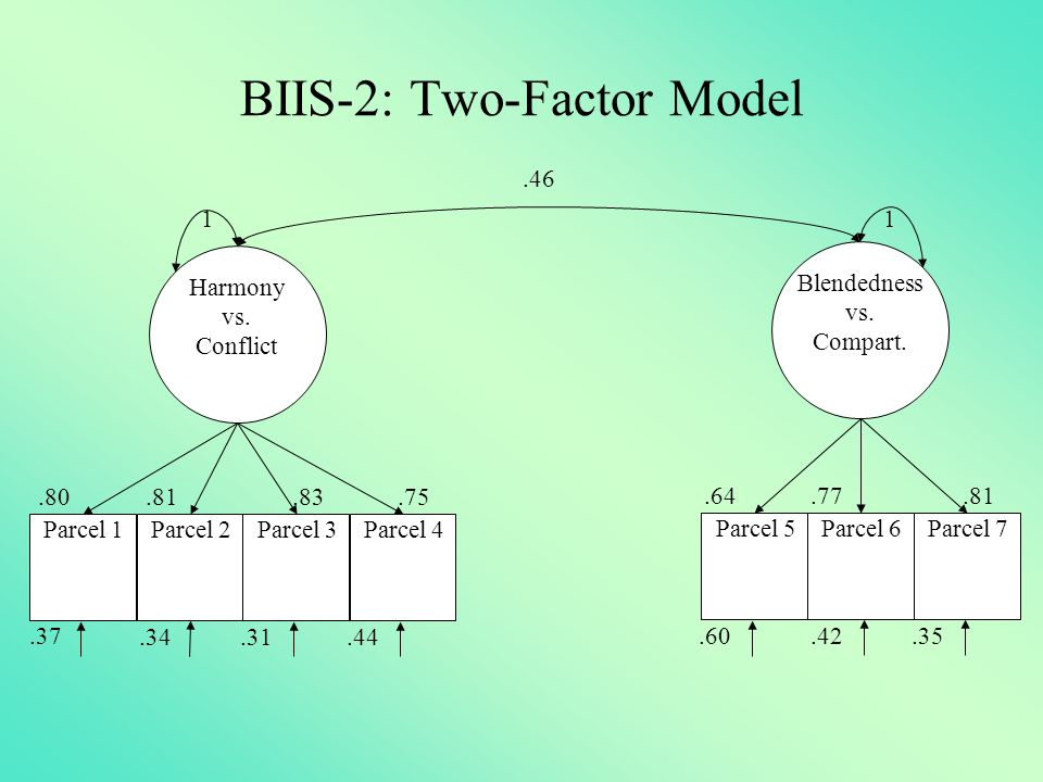 BIIS-2: Two-Factor Model