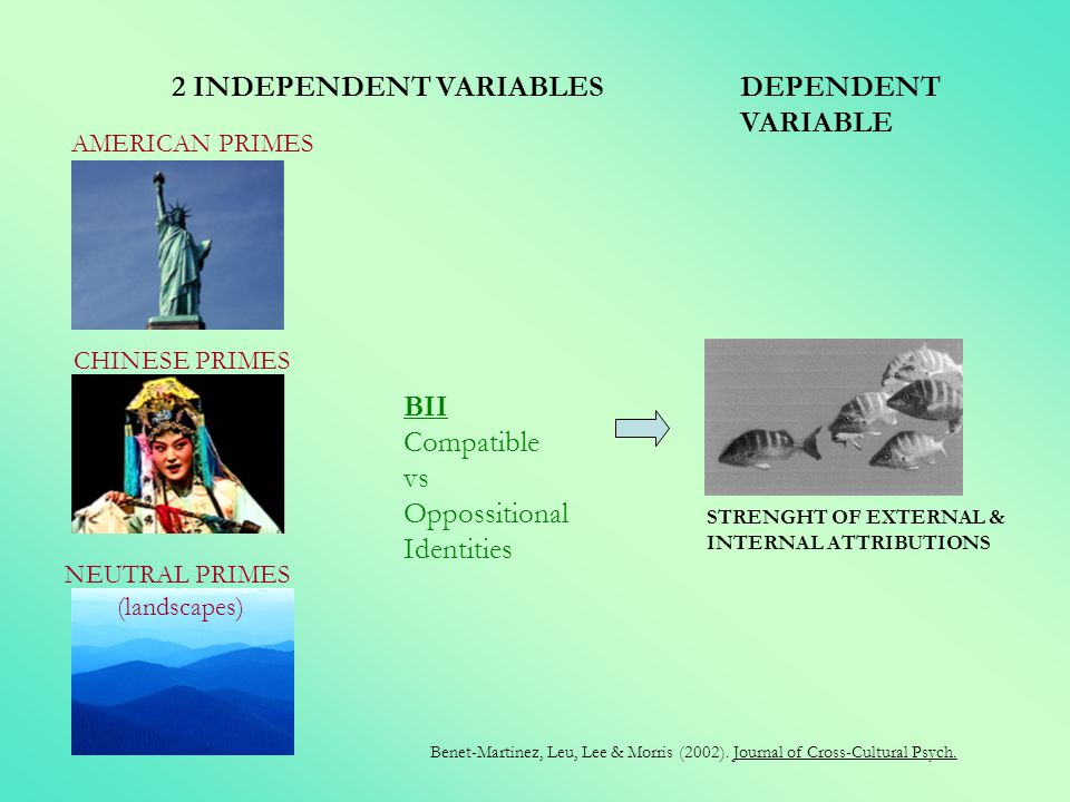 2 INDEPENDENT VARIABLES DEPENDENT VARIABLE