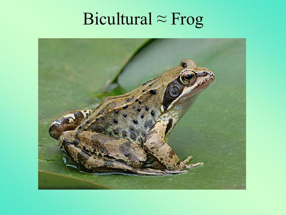 Bicultural ≈ Frog