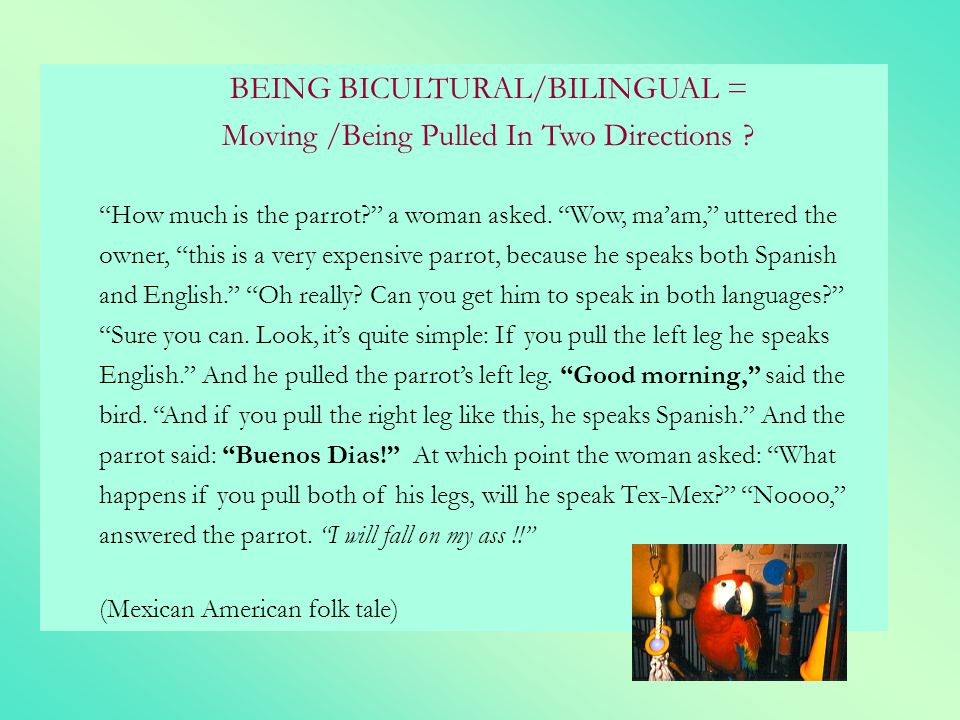 BEING BICULTURAL/BILINGUAL = Moving /Being Pulled In Two Directions