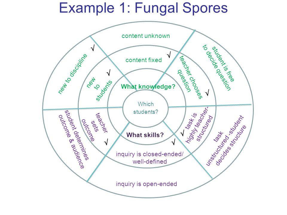 Example 1: Fungal Spores