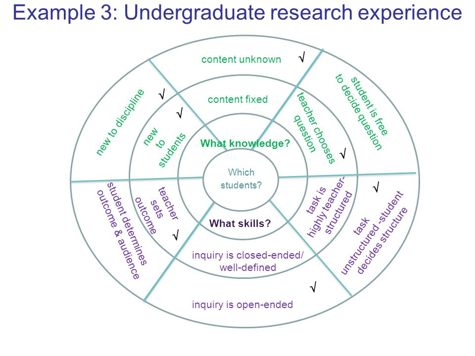Example 3: Undergraduate research experience