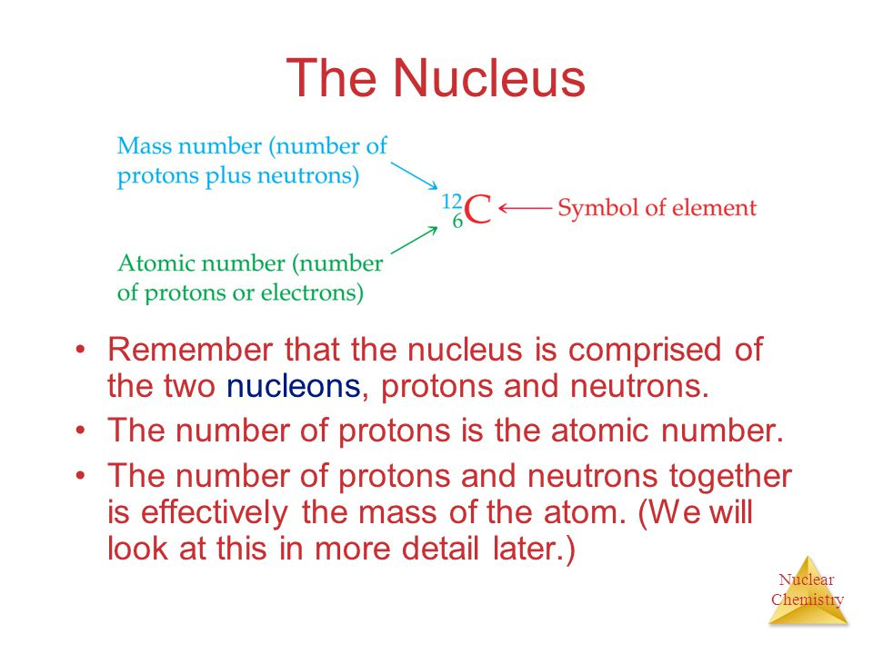 The Nucleus Remember that the nucleus is comprised of the two nucleons, protons and neutrons. The number of protons is the atomic number.