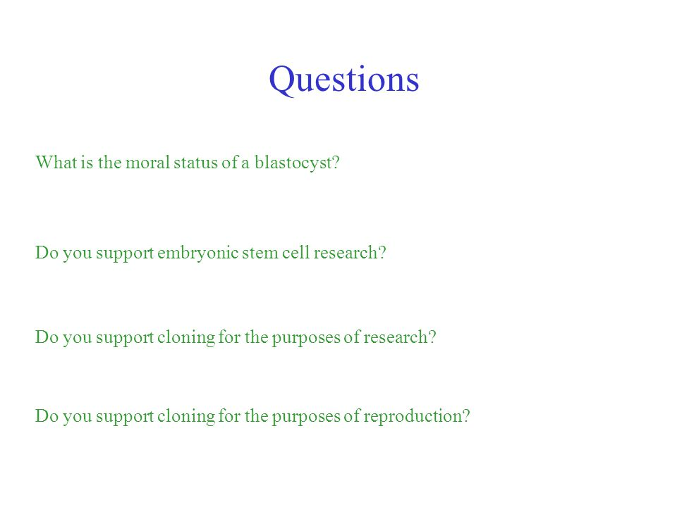 Questions What is the moral status of a blastocyst